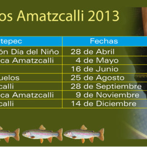 Calendario de torneos para este 2013